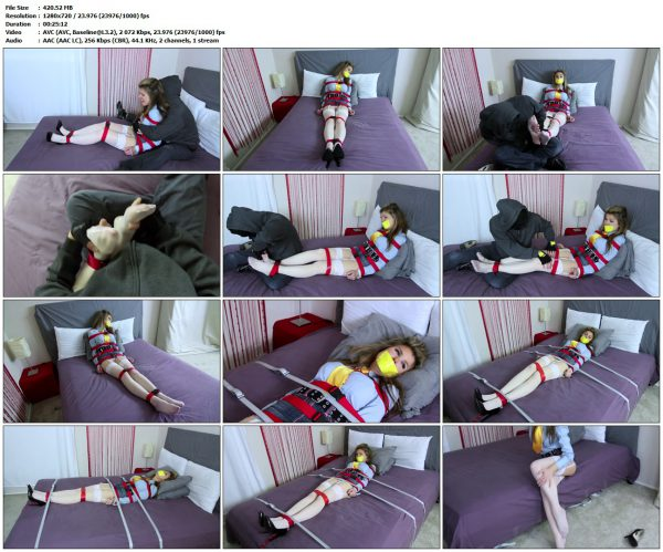 TheDamselCollector - My Tickle Captive Full VersionTheDamselCollector VIP Clips